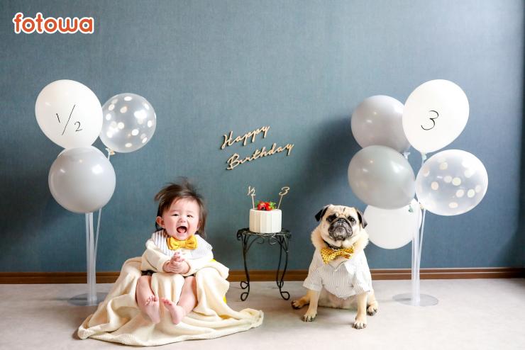 赤ちゃんとペットのお祝い写真