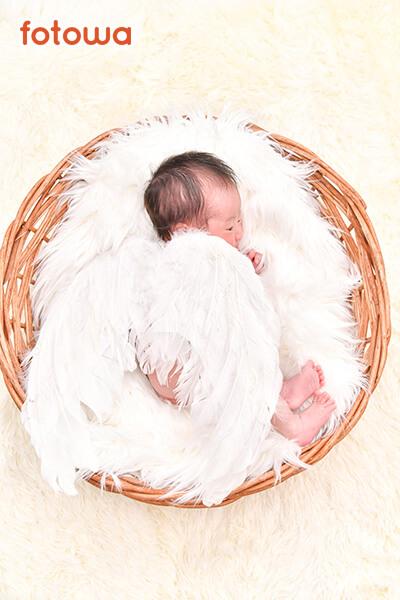 ニューボーン_かごに入っている赤ちゃん